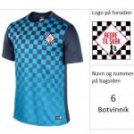 nr6Botvinnik